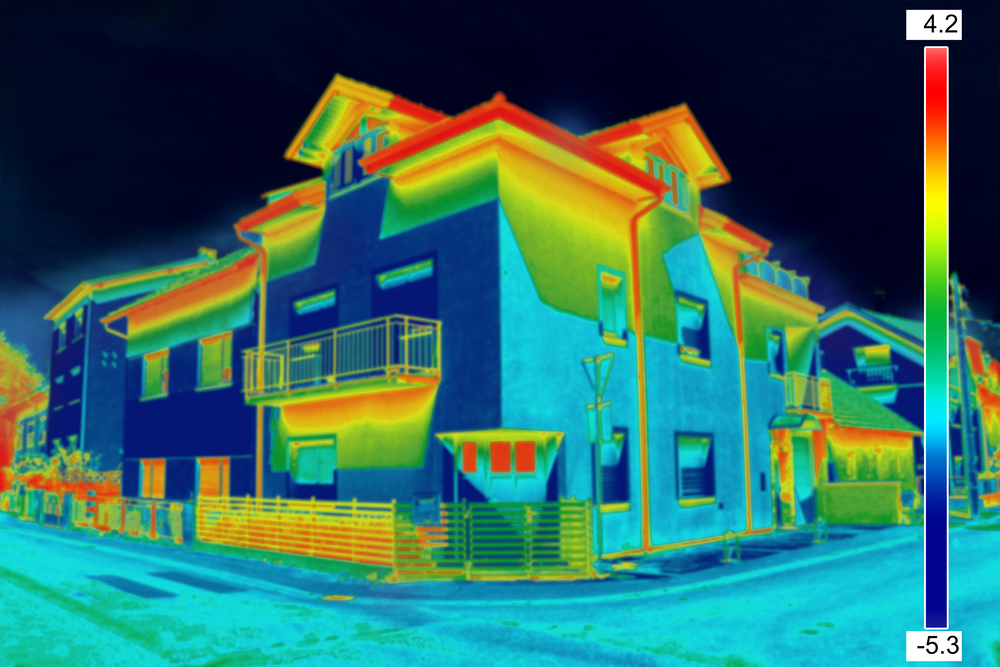 Thermal imaging assessment