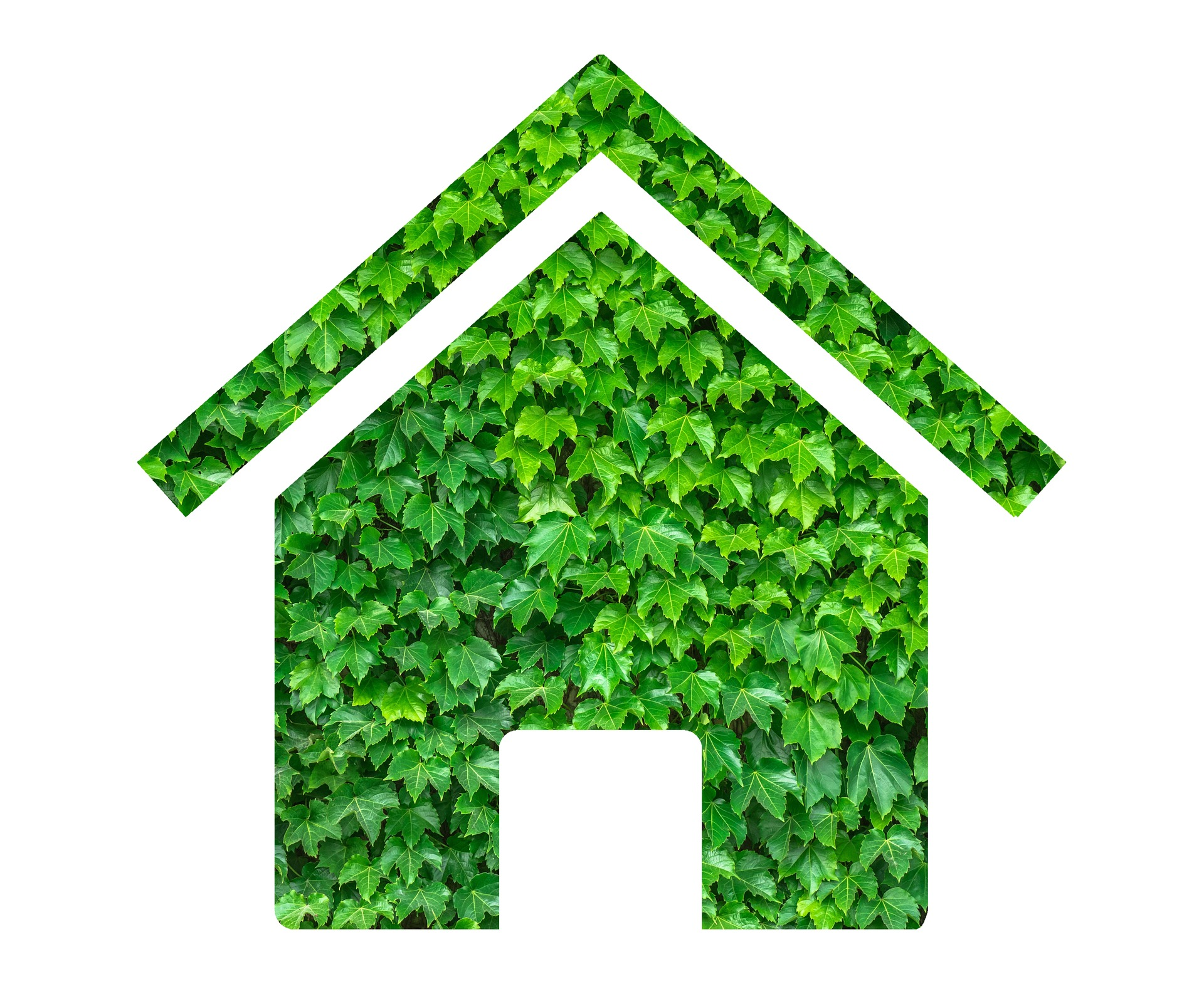 Green Home grant